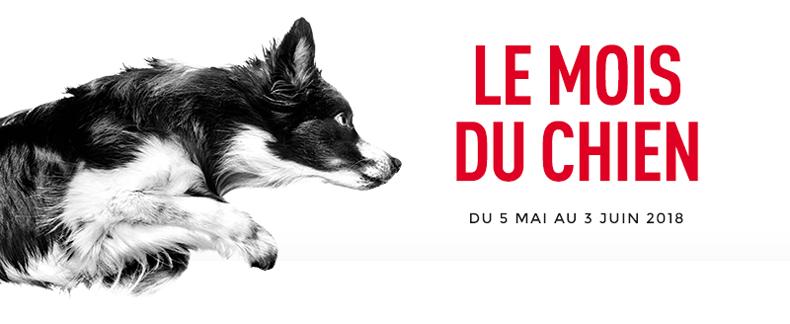 Royal Canin met vos chiens à l'honneur du 5 mai au 3 juin 2018!