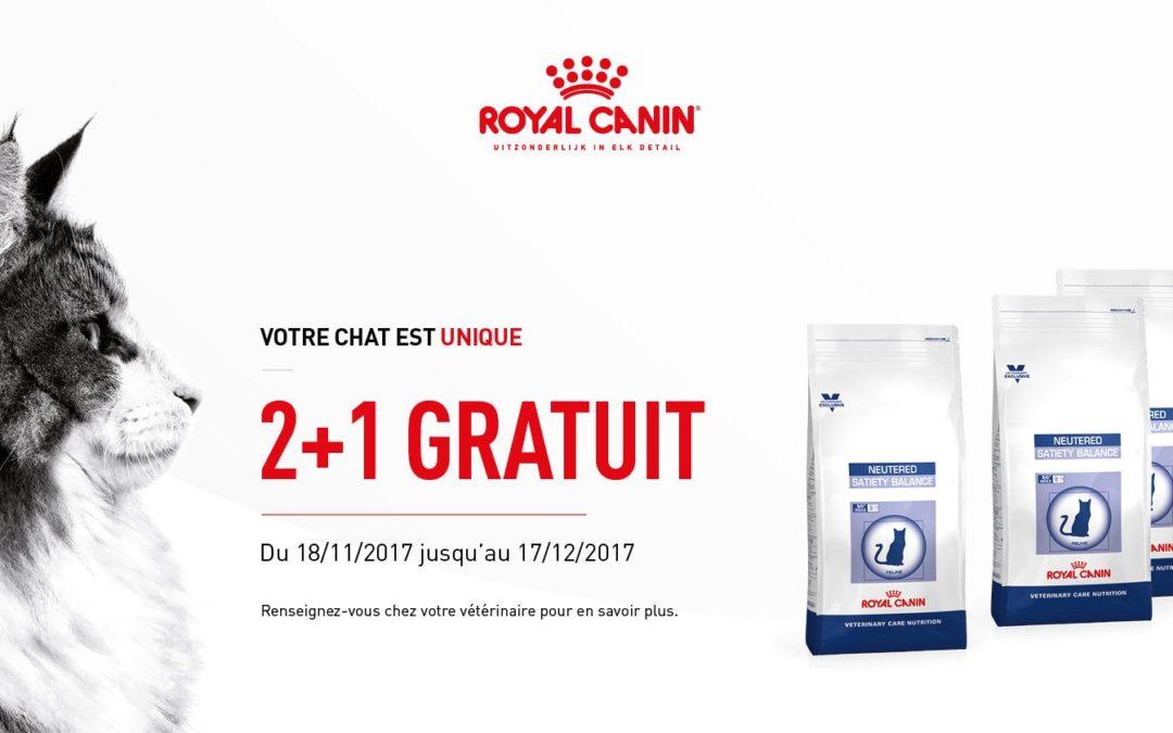 Votre Chat est unique – Promo Royal Canin